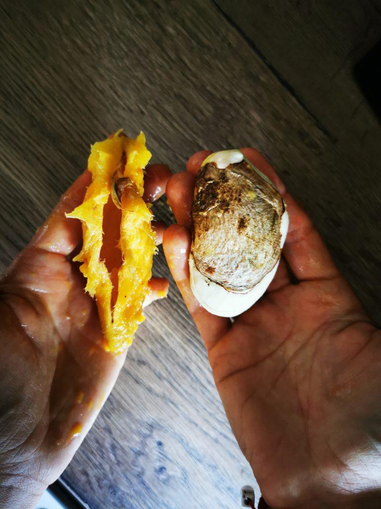 Ako-vypestovat-mango-pekne-byvat-semiacko1